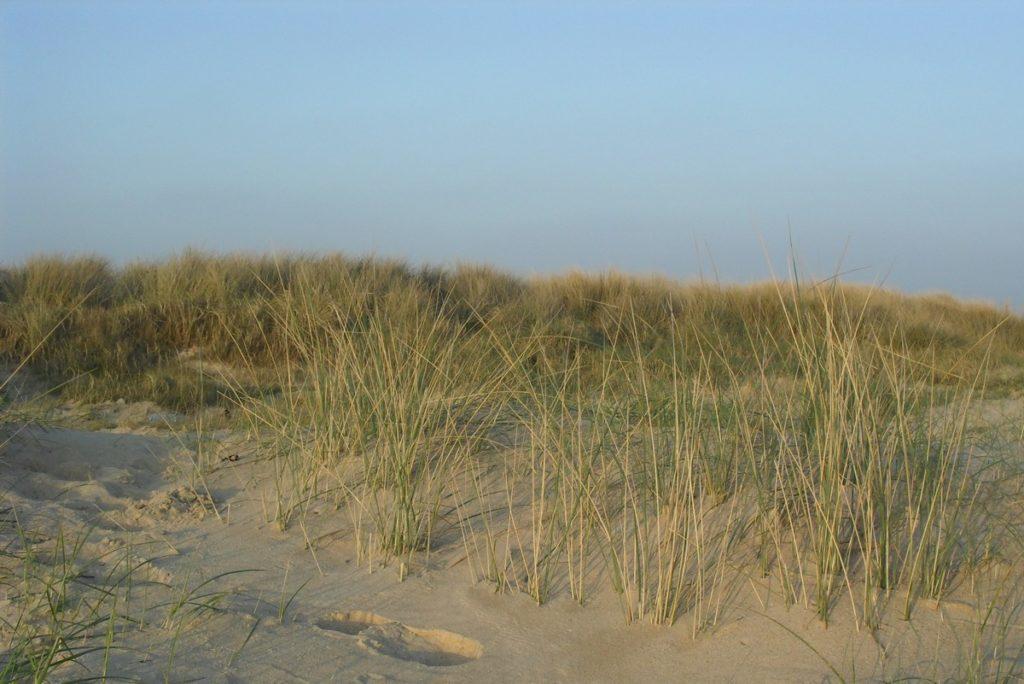 Saint Germain et ses plages de sable fin